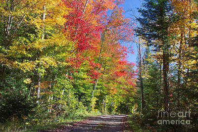 Photograph - Country Road Ny by Chris Scroggins