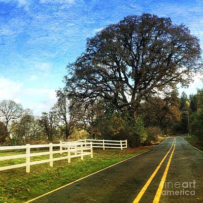 Photograph - Country Road On Sauvie Island by Charlene Mitchell