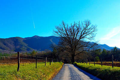 Photograph - Country Road by Shannon Harrington