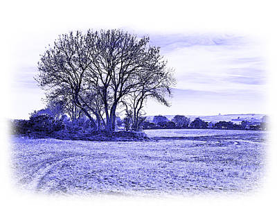 Photograph - Country Scene by Jane McIlroy