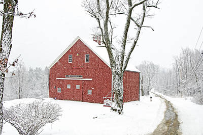 Photograph - Country Snow by Donna Doherty