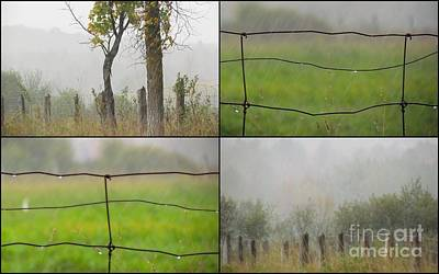 Photograph - Country Soft Side 2 by France Laliberte