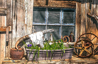 Photograph - Country Still Life 2 by Sherri Meyer