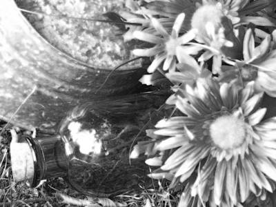 Photograph - Country Summer - Bw 04 by Pamela Critchlow
