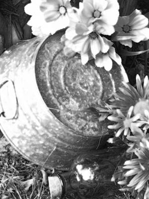 Photograph - Country Summer - Bw 07 by Pamela Critchlow