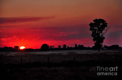 Grassy Field Photograph - Country Sunset by Kaye Menner