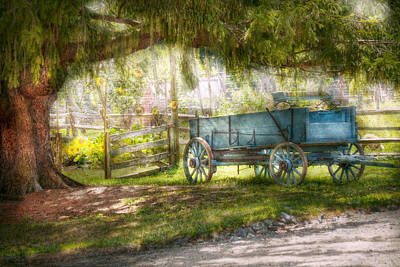 Hay Rides Photograph - Country - The Old Wagon Out Back  by Mike Savad