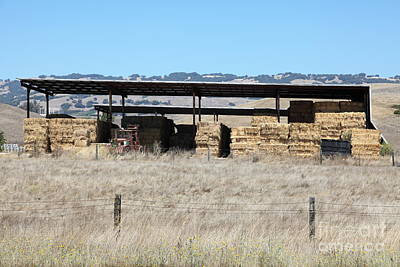 Photograph - Countryside Haystacks In Petaluma California 5d24428 by Wingsdomain Art and Photography