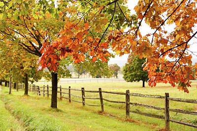 Countryside Landscape With Fence Art Print by Jena Ardell