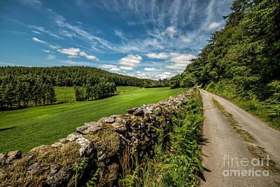 Field Digital Art - Countryside Lane by Adrian Evans