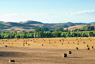Countryside Near San Qurico D'orcia Art Print by Nico Tondini