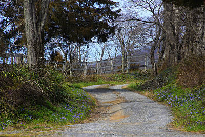 Photograph - Countryside Road by Emanuel Tanjala