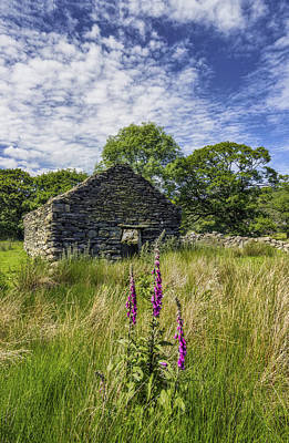 Foxglove Flowers Photograph - Countryside Ruin by Ian Mitchell