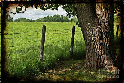 Manipulation Photograph - Countryside by Sophie Vigneault