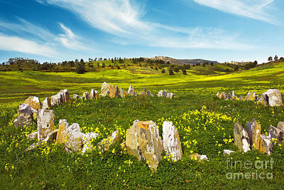 Countryside With Stones Art Print by Carlos Caetano
