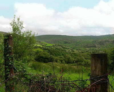 Photograph - County Cork Green by Kandy Hurley