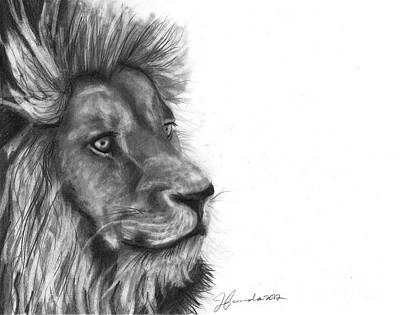 Drawing - Courage Of A Lion by J Ferwerda