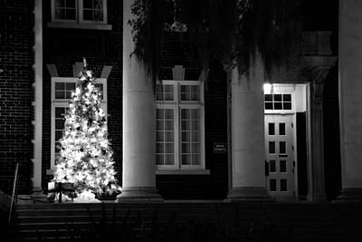 Photograph - Courthouse Tree by Beverly Stapleton
