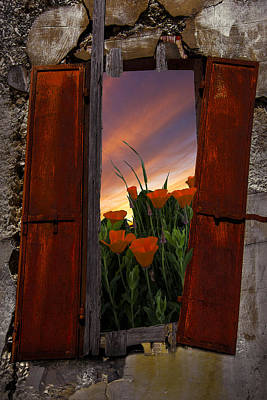 Country Cottage Photograph - Courtyard Window by Debra and Dave Vanderlaan