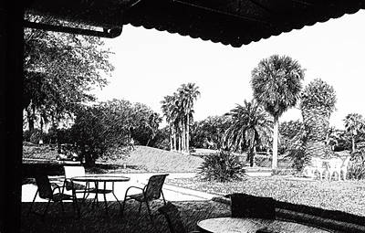Photograph - Cove Cay Country Club by Ginny Schmidt