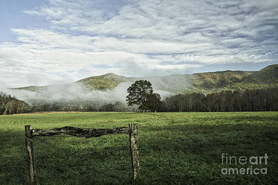 Photograph - Cove Fog And Fence by David Waldrop