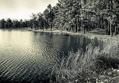 Art Print featuring the photograph Cove by Greg Jackson