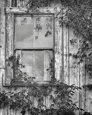 Covered In Vines - Window In Old House - Black And White Art Print