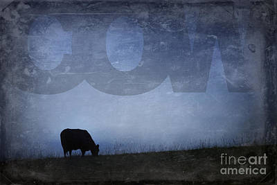 Photograph - Cow by Art Whitton