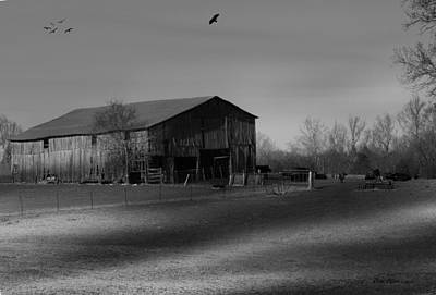 Photograph - Cow Barn by Ericamaxine Price