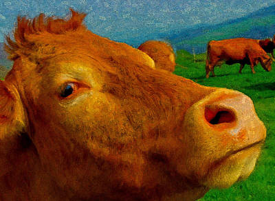 Digital Art - Cow Cameo by Chuck Mountain