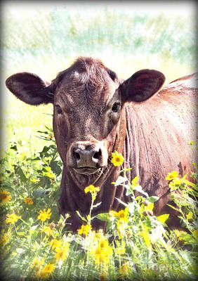 Angus Steer Mixed Media - Cow In Wildflowers by Ella Kaye Dickey