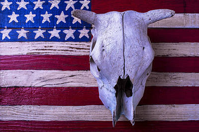 Cow Skull Photograph - Cow Skull On American Flag by Garry Gay