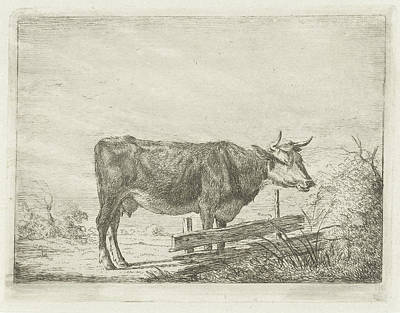 Fence Drawing - Cow Standing By A Fence, Jacobus Cornelis Gaal by Jacobus Cornelis Gaal And Pieter Gaal