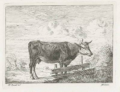 Fence Drawing - Cow Standing By A Fence, Jacobus Cornelis Gaal by Jacobus Cornelis Gaal