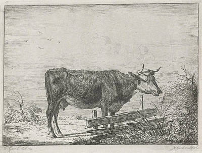 Fence Drawing - Cow Standing By A Fence, Print Maker Jacobus Cornelis Gaal by Artokoloro