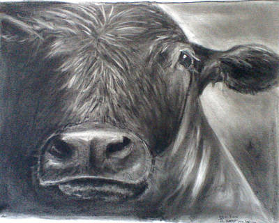 Art Print featuring the drawing Cow View by J L Zarek