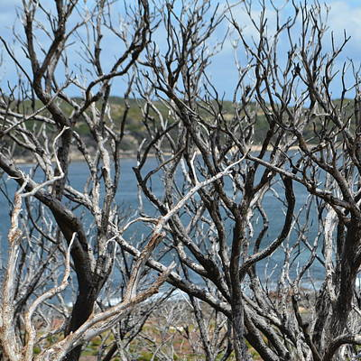 Photograph - Cowararmup Bay Water  1.2 by Cheryl Miller