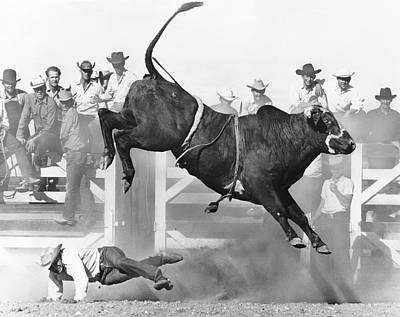Photograph - Cowboy Riding A Bull by Underwood Archives