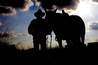 Cattle Drive Photograph - Cowboy Silhouette by Toni Hopper