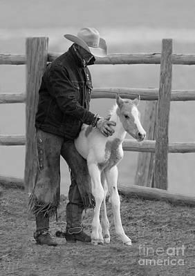 Baby Horse Photograph - Cowboy Steadies Foal by Carol Walker