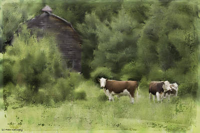 Photograph - Cows By The Barn by Fran Gallogly