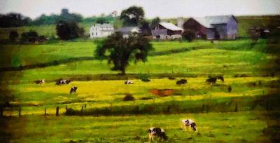Amish Farms Mixed Media - Cows On The Farm by Dan Sproul