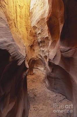 Coyote Gulch, Utah Art Print by George Ranalli
