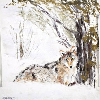 Wildlife Painting - Coyote In The Snow by Sandy Brooks