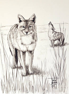 Painting - Coyote Life by Art By - Ti   Tolpo Bader