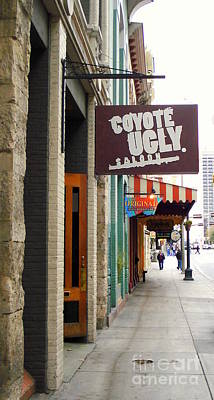 Photograph - Coyote Ugly by Rachel Munoz Striggow