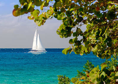 Print featuring the photograph Cozumel Sailboat by Mitchell R Grosky