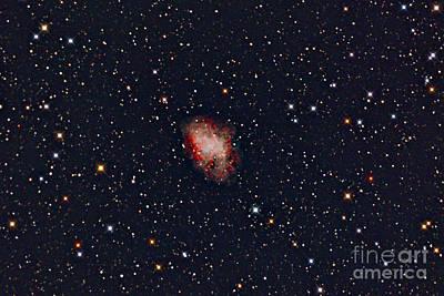 Amateur Astronomy Photograph - Crab Nebula by John Chumack
