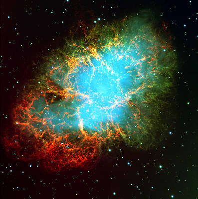 Astro Photograph - Crab Nebula by Georgia Fowler
