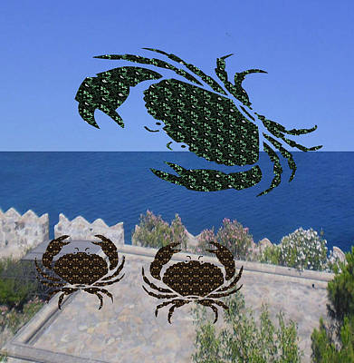 Champion Mixed Media - Crab Story Flying Crab Coming To Rescue Two Baby Crabs by Navin Joshi